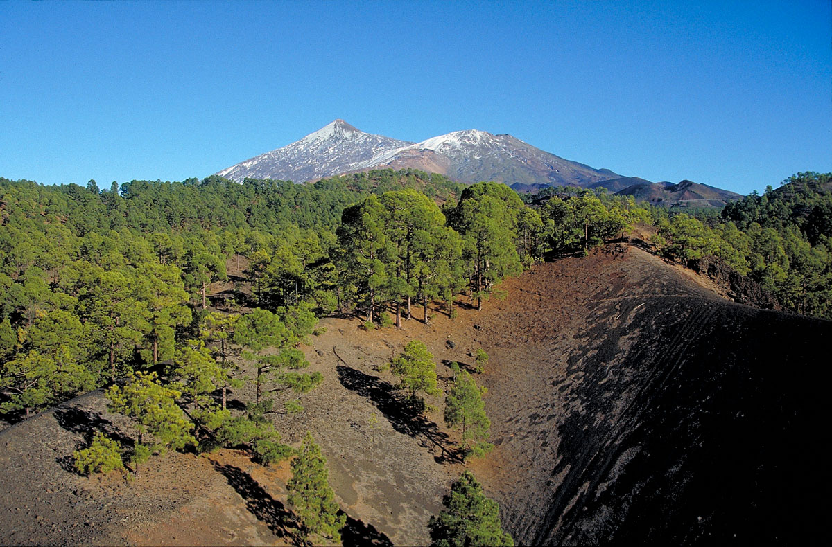 Check out the weather on Mount Teide