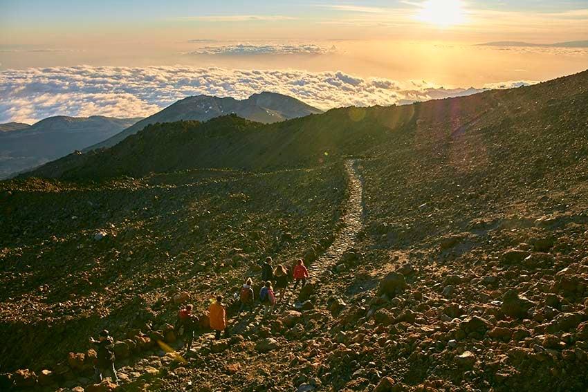 Grupo de personas paseando por los senderos del Teide
